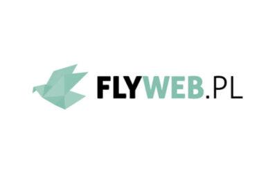 FlyWeb.pl – Robotyzacja procesów biznesowych – na czym polega?